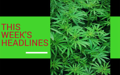 Cannabis Headlines This Week