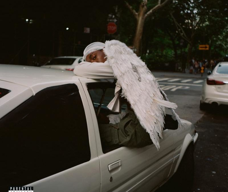 Blood Orange Returns With His 4th Album – Negro Swan